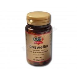Boswellia extracto seco 65% ácidos boswélicos 60 càpsulas. Obire